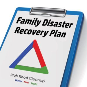FDRP-Icon Family Disaster Recovery Plan FDRP Icon 300x300