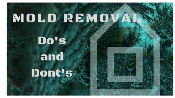 Mold Removal Do's and Don'ts MoldRemovalDosandDonts