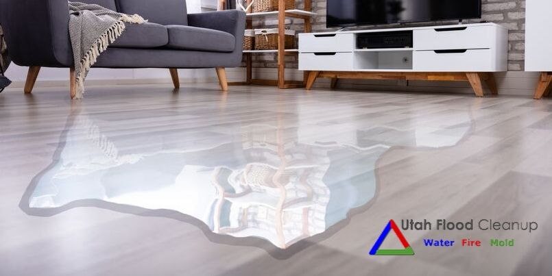 Water in the Living Room - Three Common Water Damage Cleanup Mistakes - Utah Flood Cleanup - Disaster Cleanup Utah: Water & Fire Damage