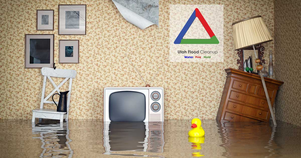 Flooded Home - How to Start Your Flooded House Clean Up