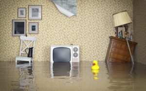 Flooded Home  First Things to Do After a Flood flood  house  home interior  water  residential building