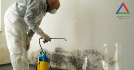 utah mold remediation person removing mold